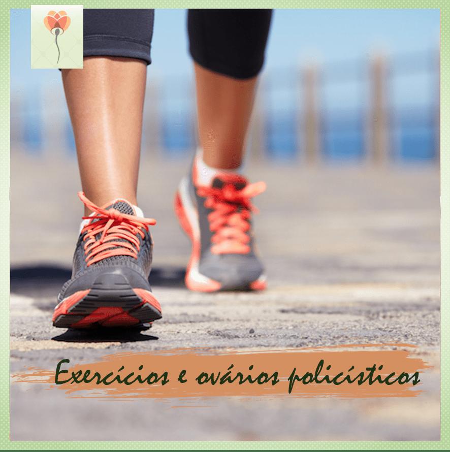 exercicios e SOP