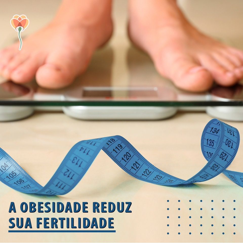 obesidade interfere na fertilidade